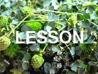 leeson_s